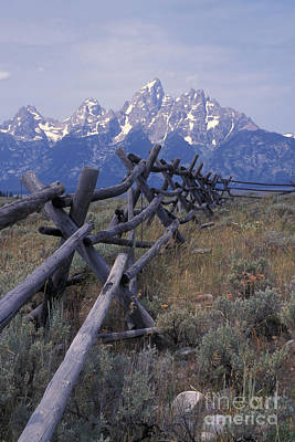 Photograph - Just An Old Fence by Stan and Anne Foster