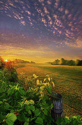 Unity Photograph - Just Another Post by Phil Koch