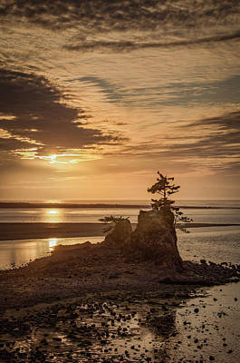 Photograph - Just Before Sundown by Don Schwartz
