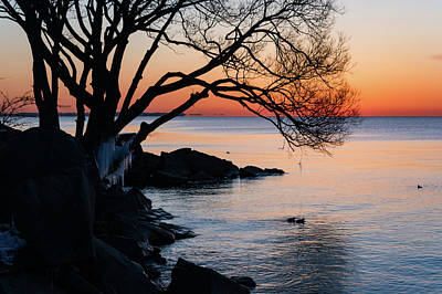 Photograph - Just Before Sunrise - Bright Cold And Colorful On The Lakeshore by Georgia Mizuleva
