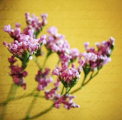 Purple Flowers Digital Art - Just Beginning  by Cathie Tyler