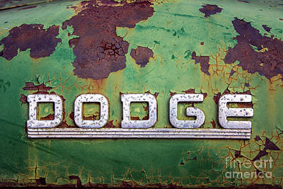 Photograph - Just Dodge by Terry Rowe