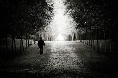 Photograph - Just Follow Me  by Alfio Finocchiaro