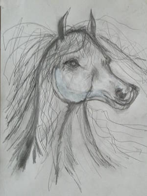 Drawing - Just Free by Sharyn Winters