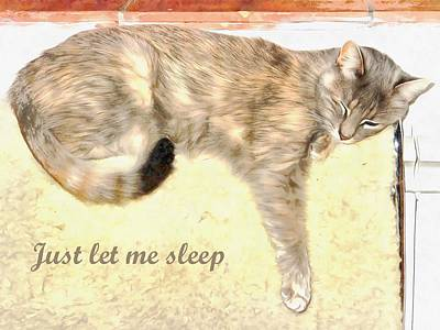 Photograph - Just Let Me Sleep by Dorothy Berry-Lound
