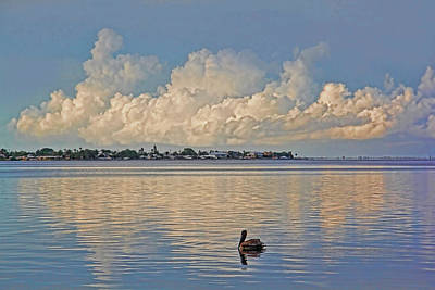 Photograph - Just Me Myself And I by HH Photography of Florida