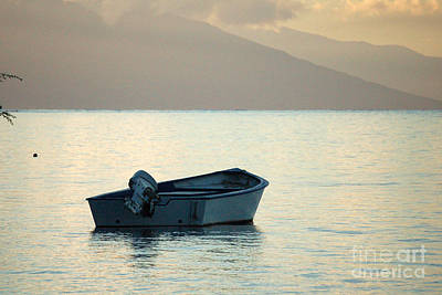 Photograph - Just Off Molokai by Terry Holliday