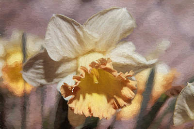 Photograph - Peaches And Cream by Donna Kennedy