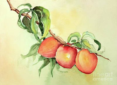 Painting - Just Peachy by Pattie Calfy