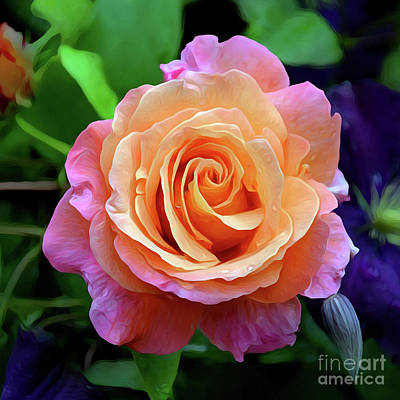 Photograph - just pink rose 0221 Hope and a Future by S Art