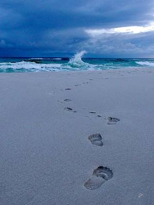 Photograph - Just Steps To The Sea by TK Goforth