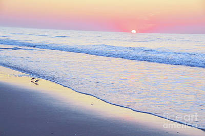 Photograph - Just The Two Of Us - Jersey Shore Series by Robyn King