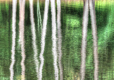 Firefighter Patents Royalty Free Images - Green Pond Reflections Royalty-Free Image by Blaine Owens