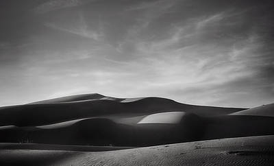 Desert Photograph - Just Tryin' To Find Some Peace by Laurie Search