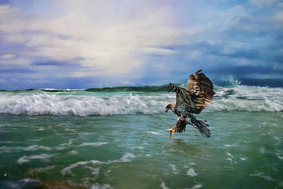 Eagle In Flight Photograph - Juvenile Eagle At Sea Wildlife Art by Jai Johnson