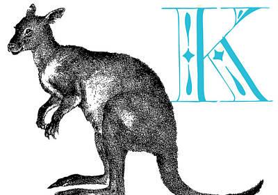 Kangaroo Digital Art - K Kangaroo by Thomas Paul