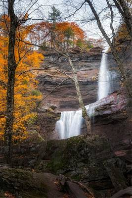 Photograph - Kaaterskill Falls Thru The Forest Portrait by Bill Wakeley