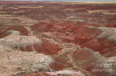 Photograph - Kachina Point 8b9230l by Stephen Parker