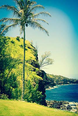Photograph - Kahakuloa Beach Palm by Sharon Mau