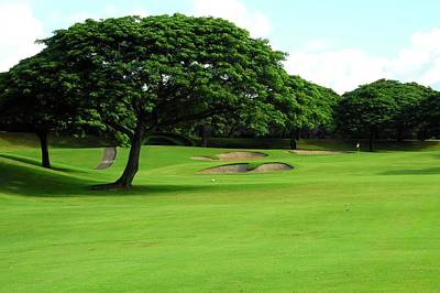 Kahili Golf Course Fairway Trees Art Print by Kirsten Giving