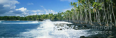 Photograph - Kalapana Black Sand Beach by David Cornwell First Light Pictures Inc - Printscapes