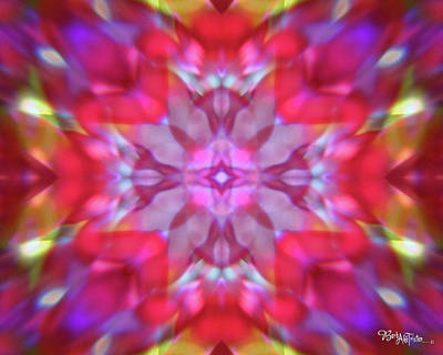 Photograph - Kaleidoscope #011 by Barbara Tristan