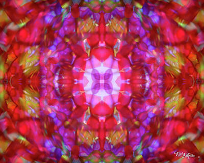 Photograph - Kaleidoscope #012 by Barbara Tristan