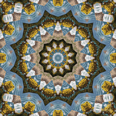 Motif Digital Art - Kaleidoscope 088 by Paul Gillard