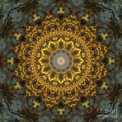 Motif Digital Art - Kaleidoscope 092  by Paul Gillard