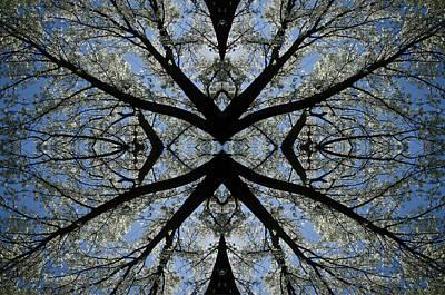 Photograph - Kaleidoscope 1 by Gregory Moon