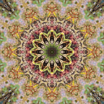 Motif Digital Art - Kaleidoscope 102 by Paul Gillard