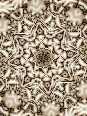 Digital Art - Kaleidoscope 118 by Ron Bissett