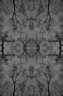 Photograph - Kaleidoscope 3 by Gregory Moon