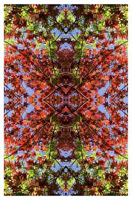 Photograph - Kaleidoscope 7 by Gregory Moon