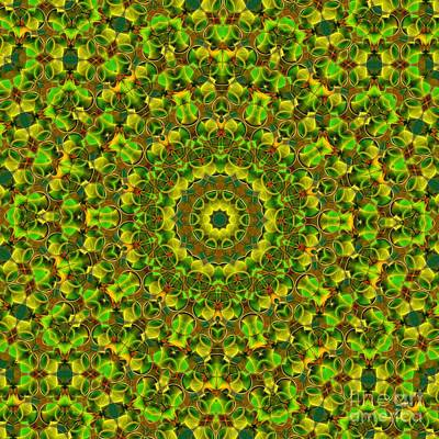 Digital Art - Kaleidoscope 97 by Ron Bissett