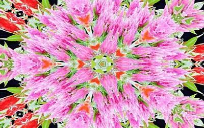 Digital Art - Kaleidoscope Beauty by D Hackett