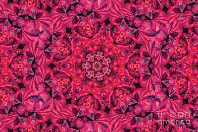 Digital Art - Kaleidoscope No. 3 - Red by Gene Healy