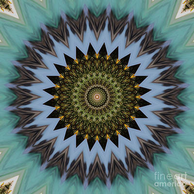 Repeat Digital Art - Kaleidoscope O Eleven by Paul Gillard