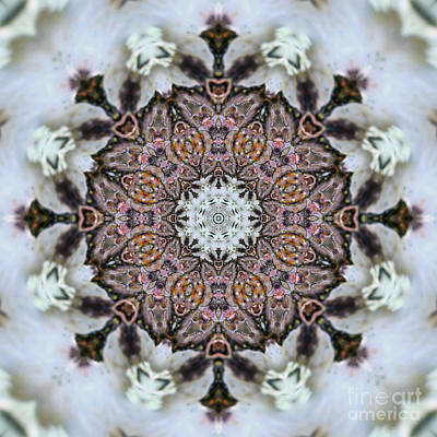 Motif Digital Art - Kaleidoscope O Seven by Paul Gillard