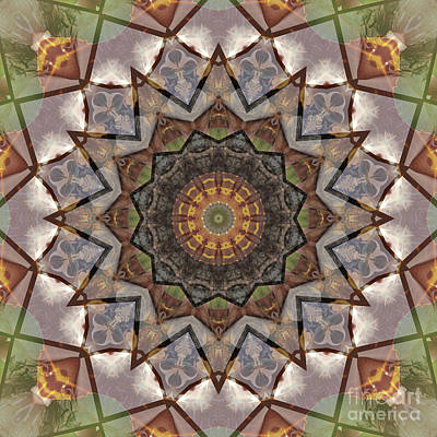 Radial Digital Art - Kaleidoscope O Seventy Five by Paul Gillard