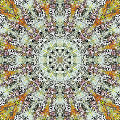 Mind Bending Digital Art - Kaleidoscope O Thirty by Paul Gillard