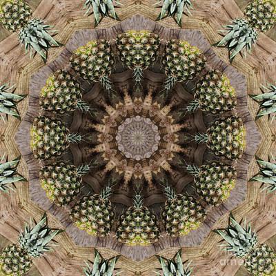Pineapple Digital Art - Kaleidoscope O Thirty Seven by Paul Gillard