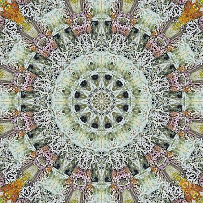 Mind Bending Digital Art - Kaleidoscope O Twenty Six by Paul Gillard