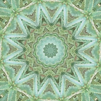 Digital Art - Kaleidoscope Of Cacti by Tracey Harrington-Simpson