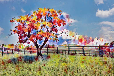 Photograph - Kaleidoscope Of Colors by Debra and Dave Vanderlaan