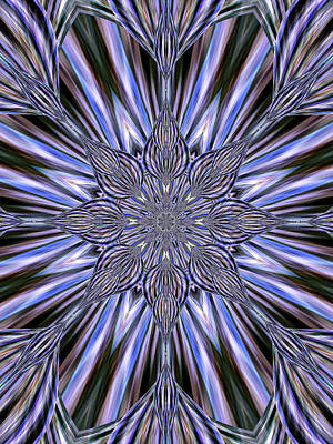 Digital Art - Kaleidoscope by Ted Raynor