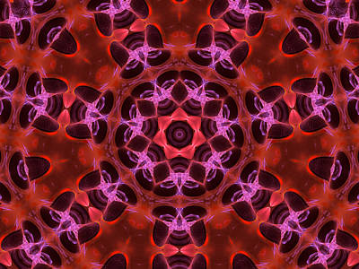 Digital Art - Kaleidoscope With Seven Petals by Ernst Dittmar