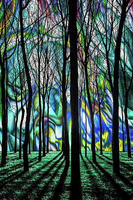 Photograph - Kaleidoscope Wood by Michael Arend