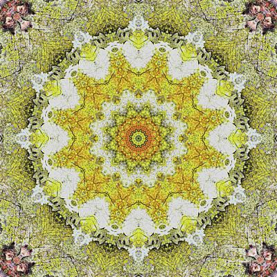 Mind Bending Photograph - Kaleidoscope Zero Twenty Nine by Paul Gillard