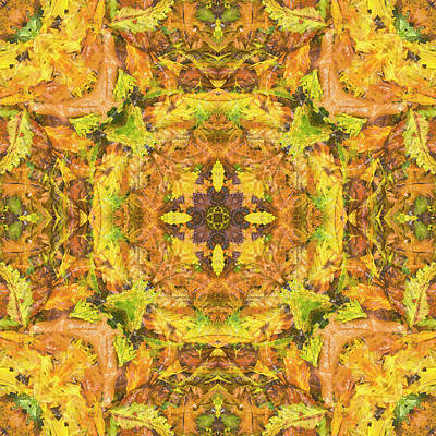 Digital Art - Kaleidoscopia - After The Rain by Frans Blok